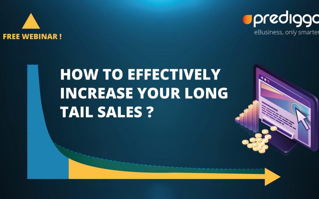 Comment augmenter efficacement vos ventes Long Tail ?